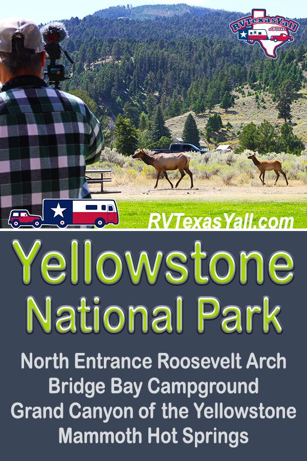 Yellowstone National Park, Part 1 | RVTexasYall.com