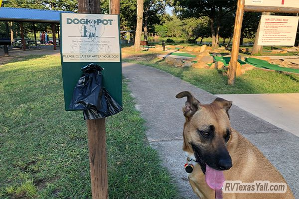 South Shore Park is Pet Friendly