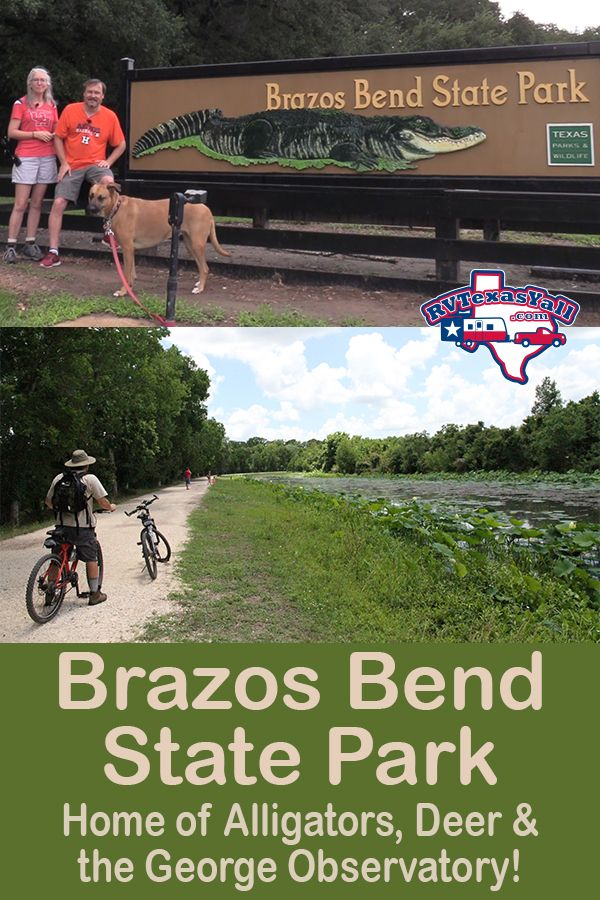 Brazos Bend State Park Visitor Guide Park Review