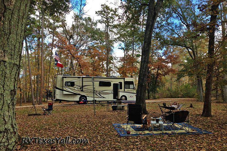 Campsite at Huntsville State Park