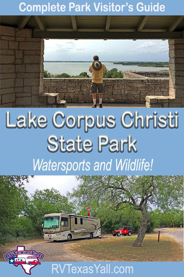 A lesser known member of the Texas State Park system, Lake Corpus Christi State Park near Mathis TX is a Civilian Conservation Corps park that locals love for its water sport opportunities like fishing, swimming, boating and paddle boarding. But this is also a great birding and wildlife watching park with a number of surprises! #texas #txstateparks #stateparks #texasgulfcoast #mathistx #lakecorpuschrististatepark #findyourpark #traveltexas #usaroadtrip #rvtexasyall