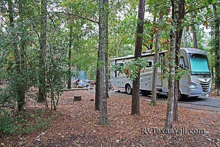 Our Campsite at Lake Livingston State Park