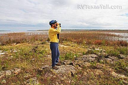 Birding at Rocky Point