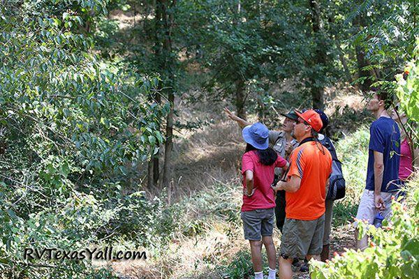 Ranger Led Hikes at Stephen F Austin State Park