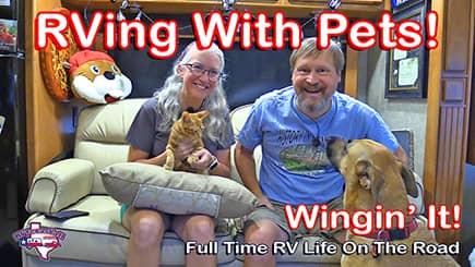 Wingin' It!, Episode 63